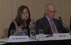 VX2017: Pension Investment & Banking On Clean Energy